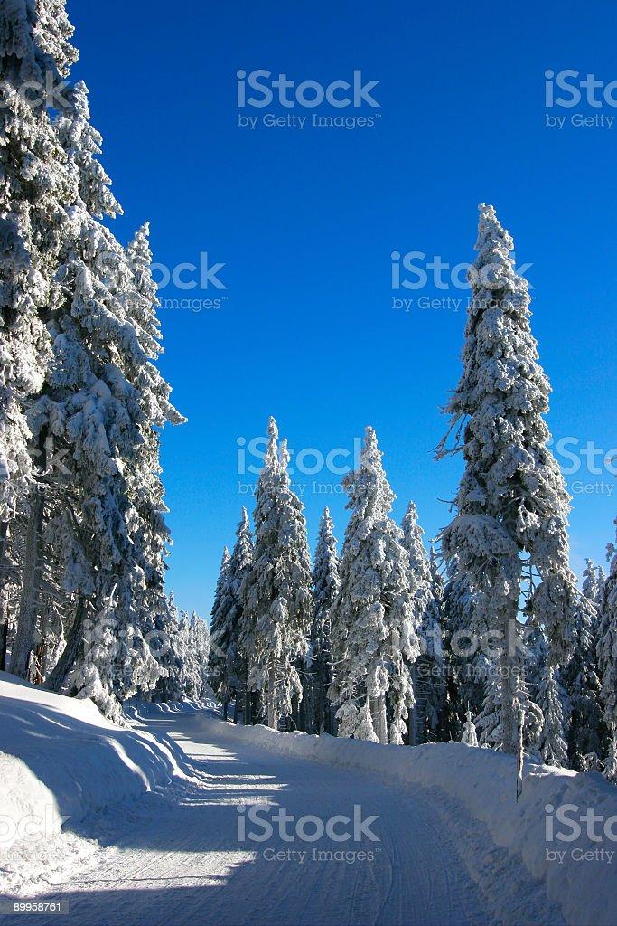 Winter Road VII royalty-free stock photo