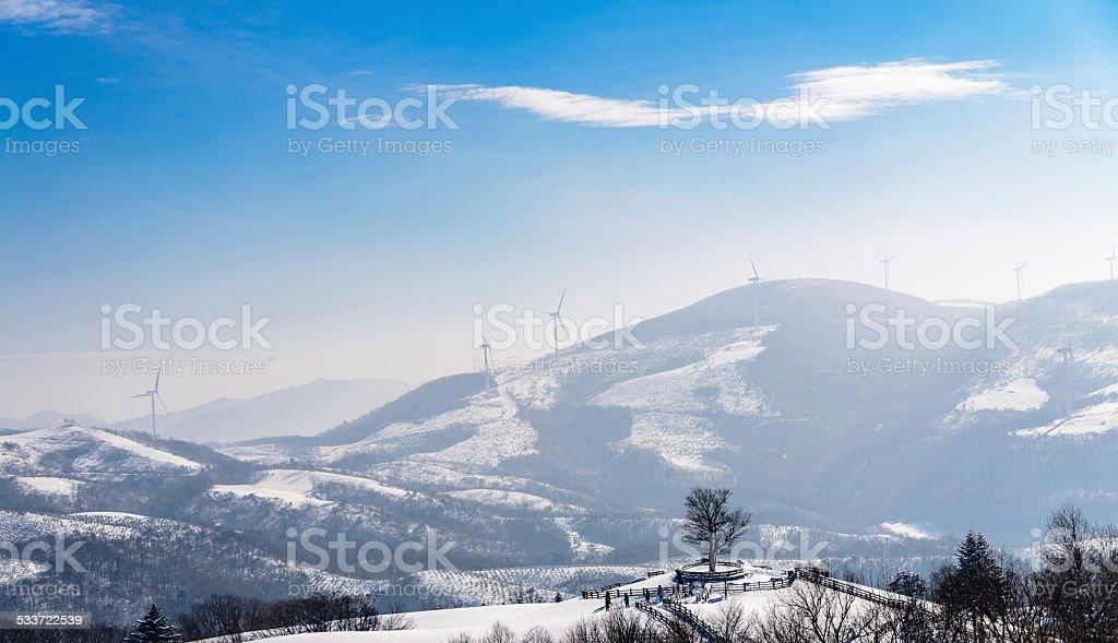 Zima Scape w farm Hill zbiór zdjęć royalty-free