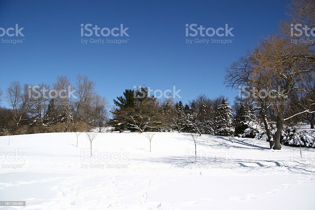 Winter Scene - 04 royalty-free stock photo