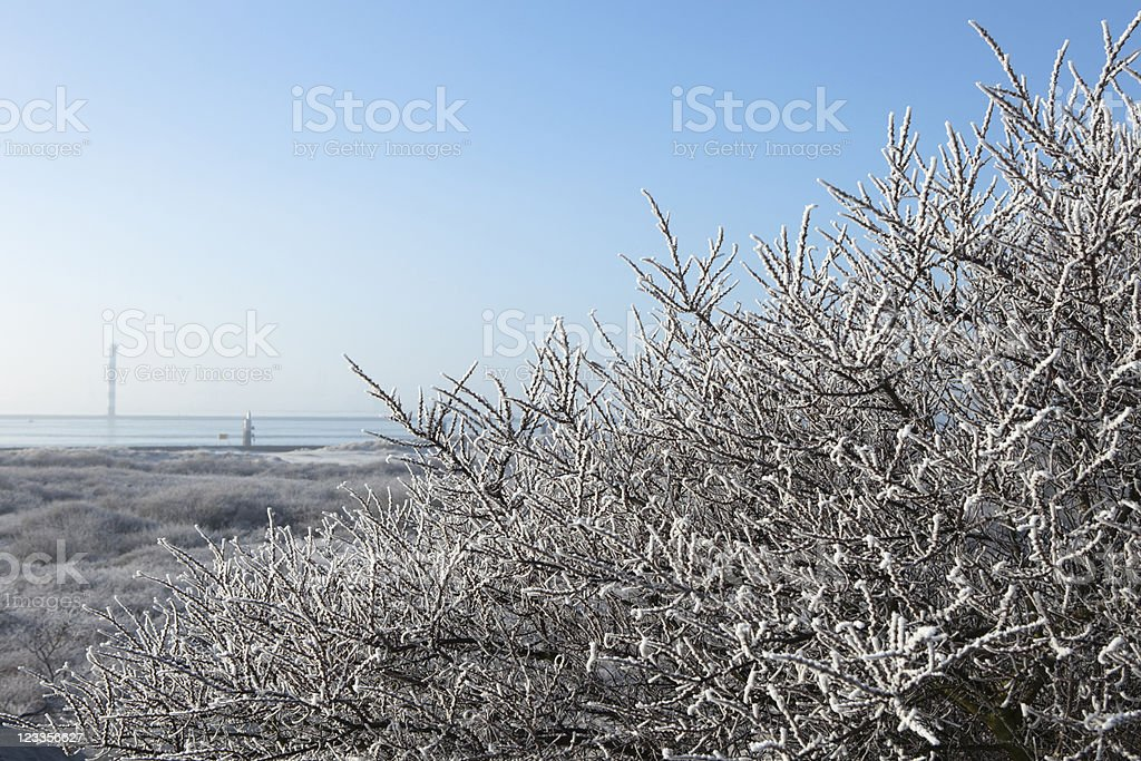 winter scene along the Nieuwe Waterweg stock photo