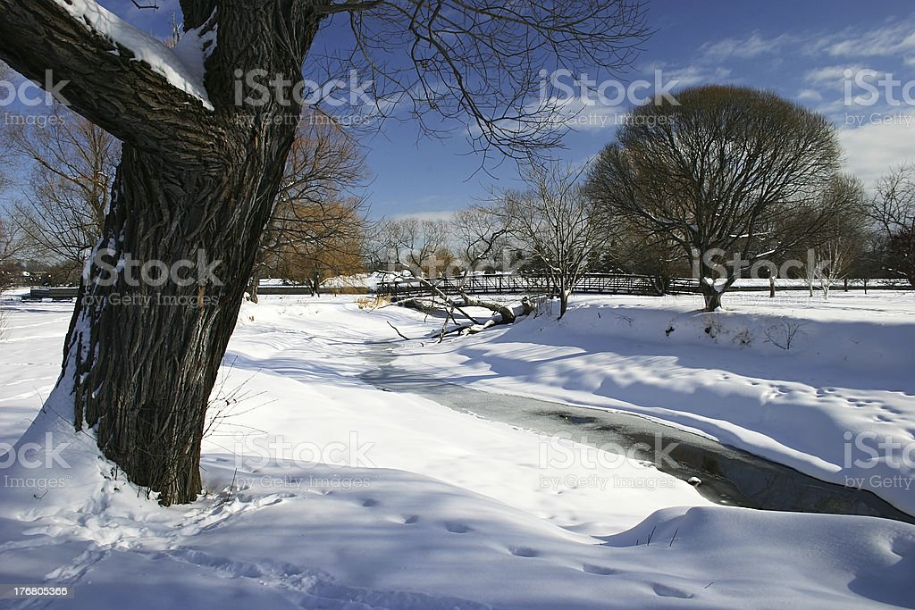 Winter Scene by a Creek royalty-free stock photo