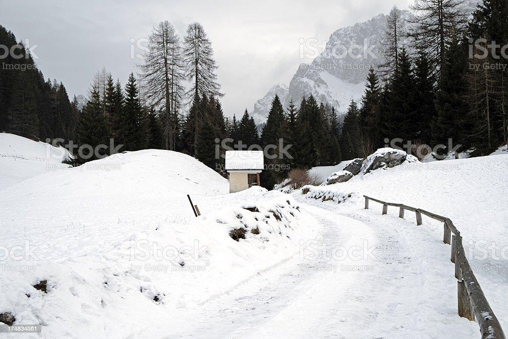 Winter Scene. Color Image stock photo