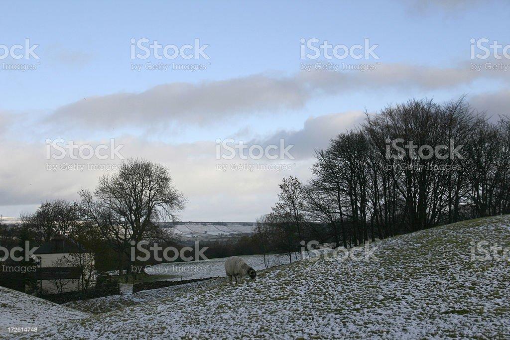 winter scene English countryside Yorkshire royalty-free stock photo