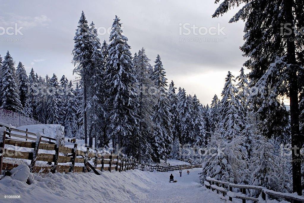 Winter scene in the Alps stock photo