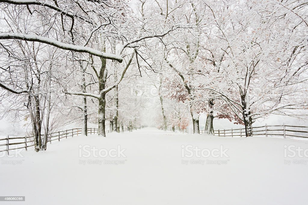 Winter scene of  rural road lined with wooden fence stock photo