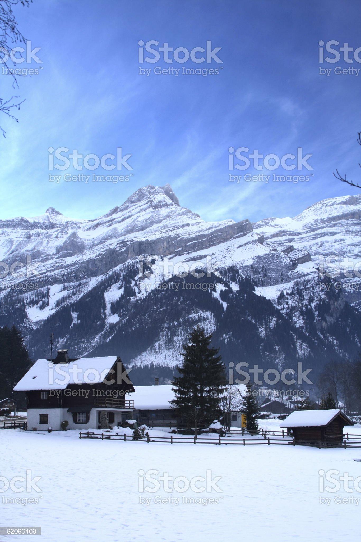Winter Scene royalty-free stock photo