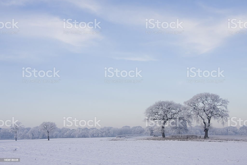 Winter Scene - Snow covered Countryside royalty-free stock photo