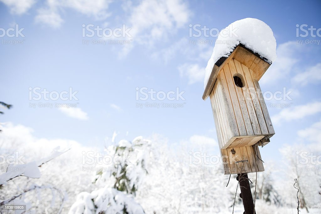Winter Scene - Snow-Covered Birdhouse and Blue Sky royalty-free stock photo