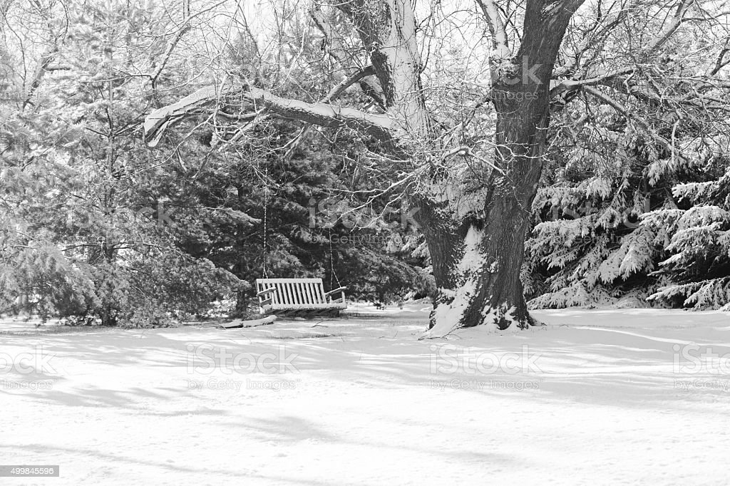 Winter Scene with Bench Swing on a Tree stock photo
