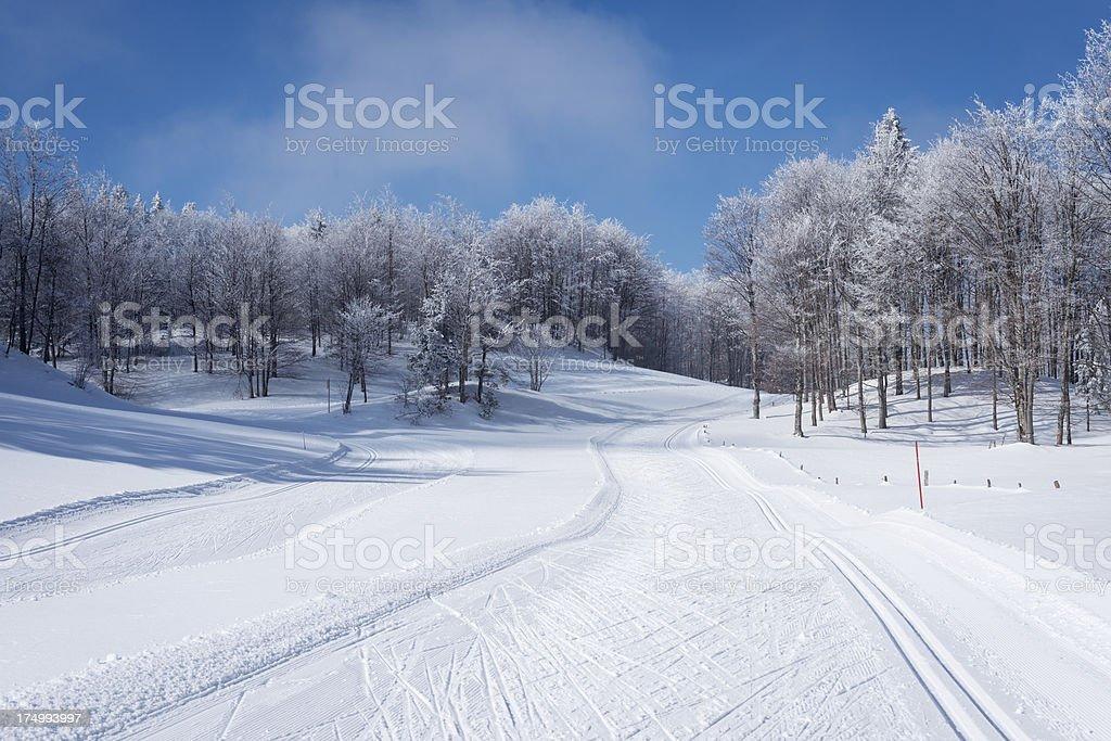 Winter Scene with Cross-Country Ski Tracks Slovenia royalty-free stock photo