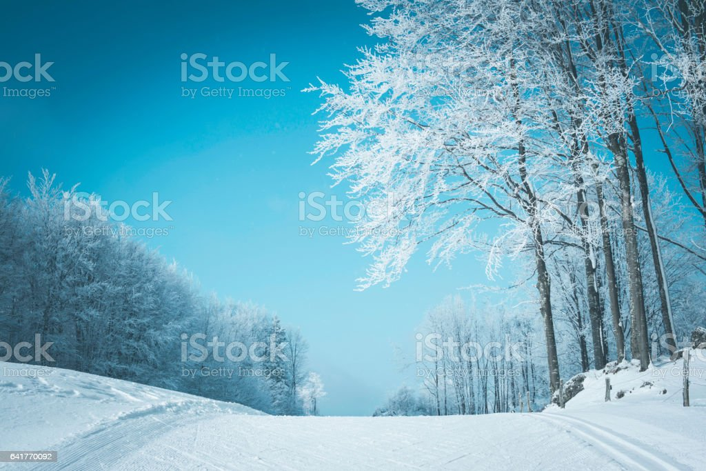 Winter Scene with Cross-Country Skiing Track in Julian Alps stock photo