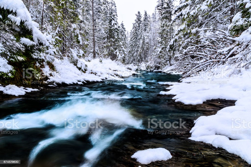 Winter scene with Tatra Mountain stream in the forest stock photo