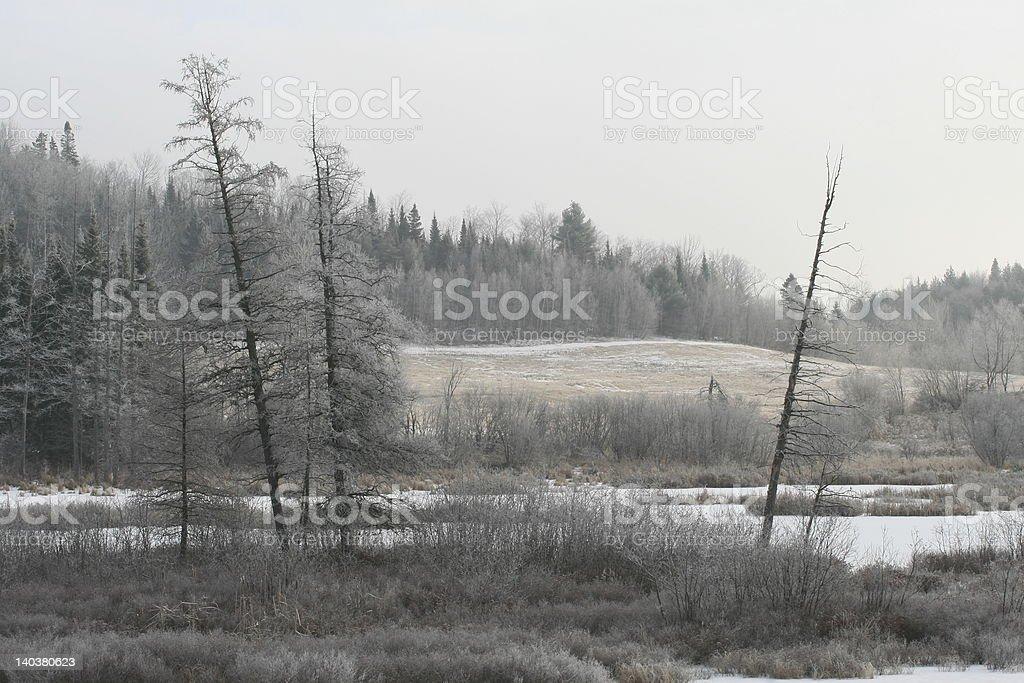Panoramique d'hiver photo libre de droits