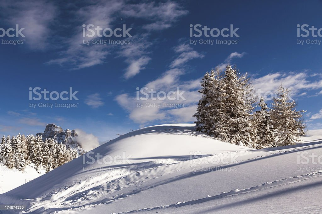 Winter Scenic royalty-free stock photo