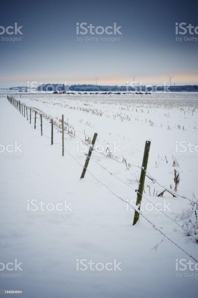 Winter scenics stock photo
