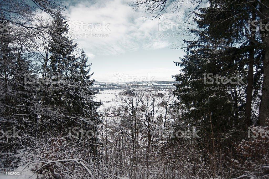 Winter scenics royalty-free stock photo