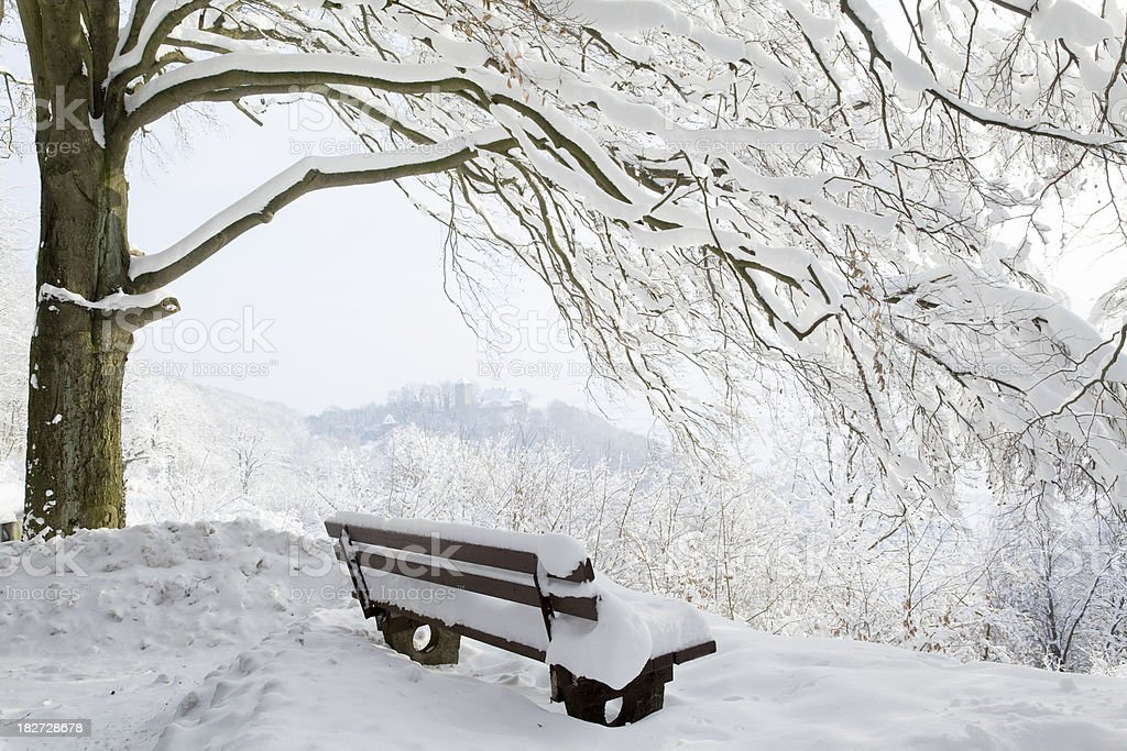 Winter scenics with Park bench under tree in snow royalty-free stock photo