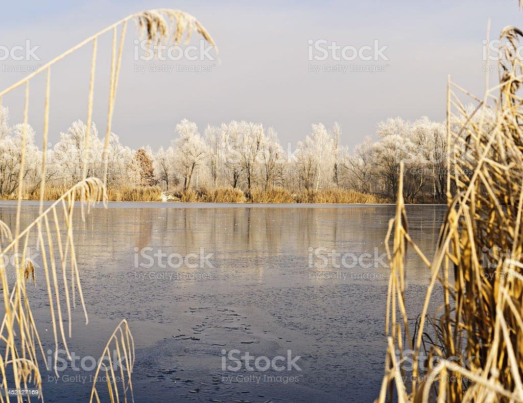 Winter Seascape royalty-free stock photo