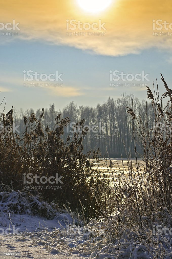 Winter seascape royalty-free stock photo