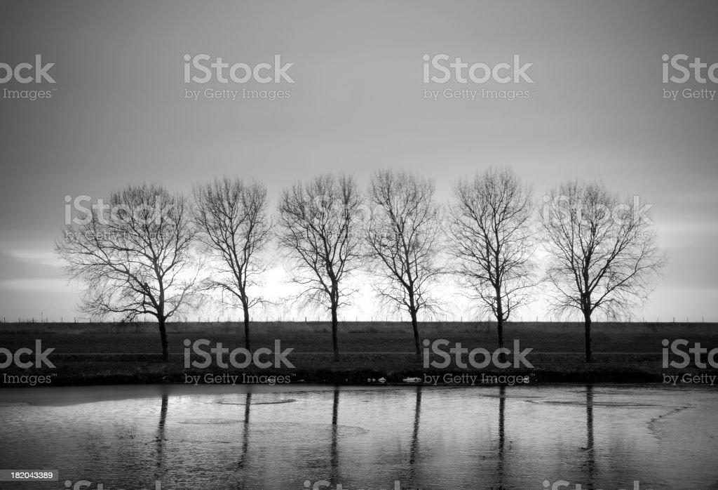 Winter segment stock photo