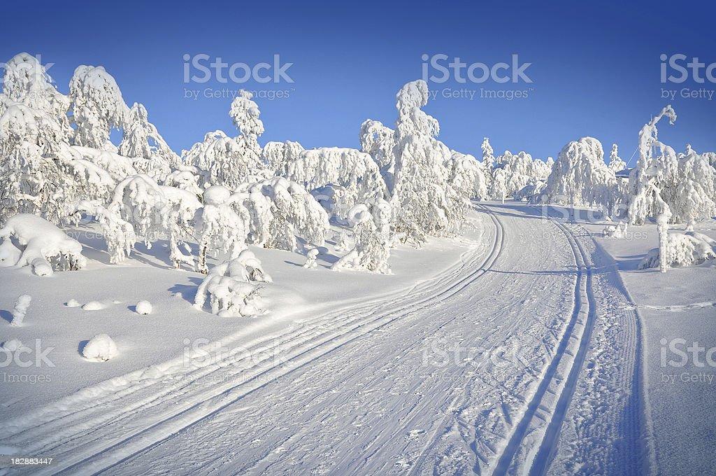 Winter, ski tracks in snow covered landscape royalty-free stock photo