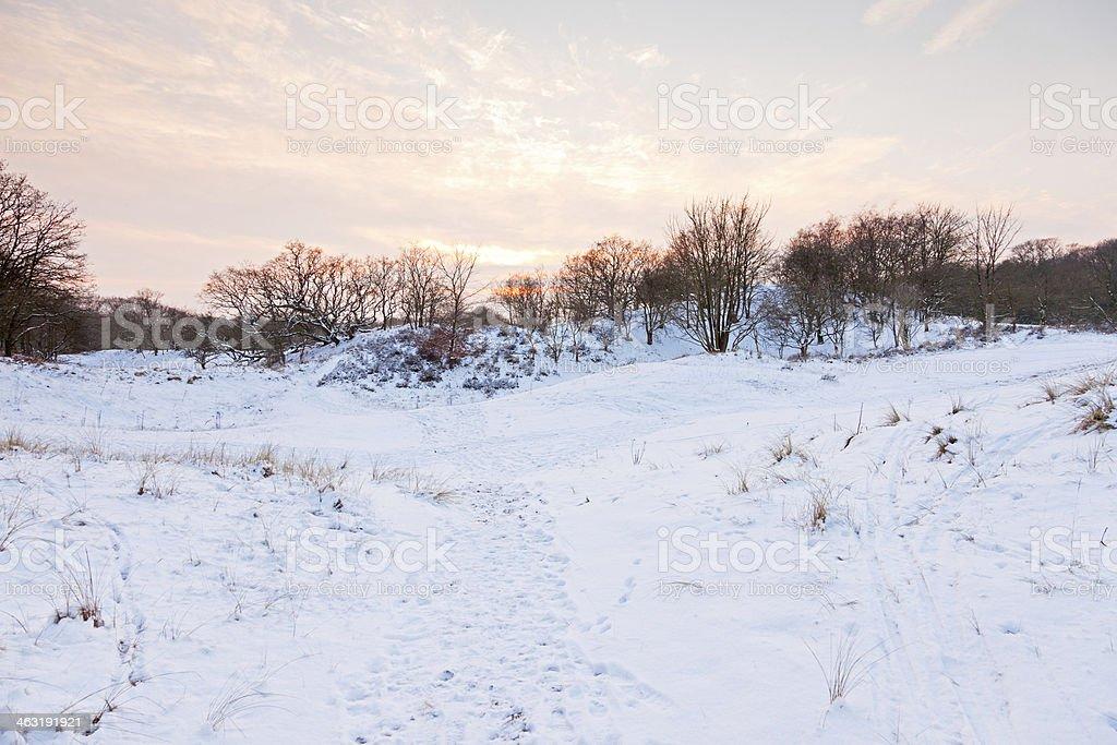 Winter snow dune landscape at sunset. stock photo