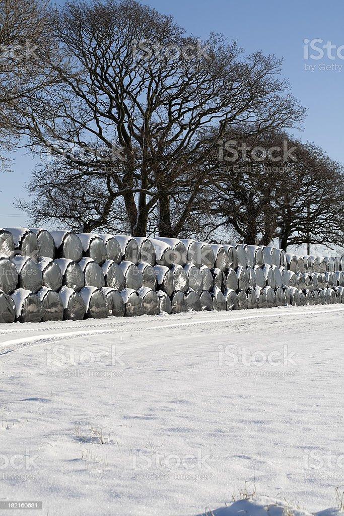 winter snow farming stock photo