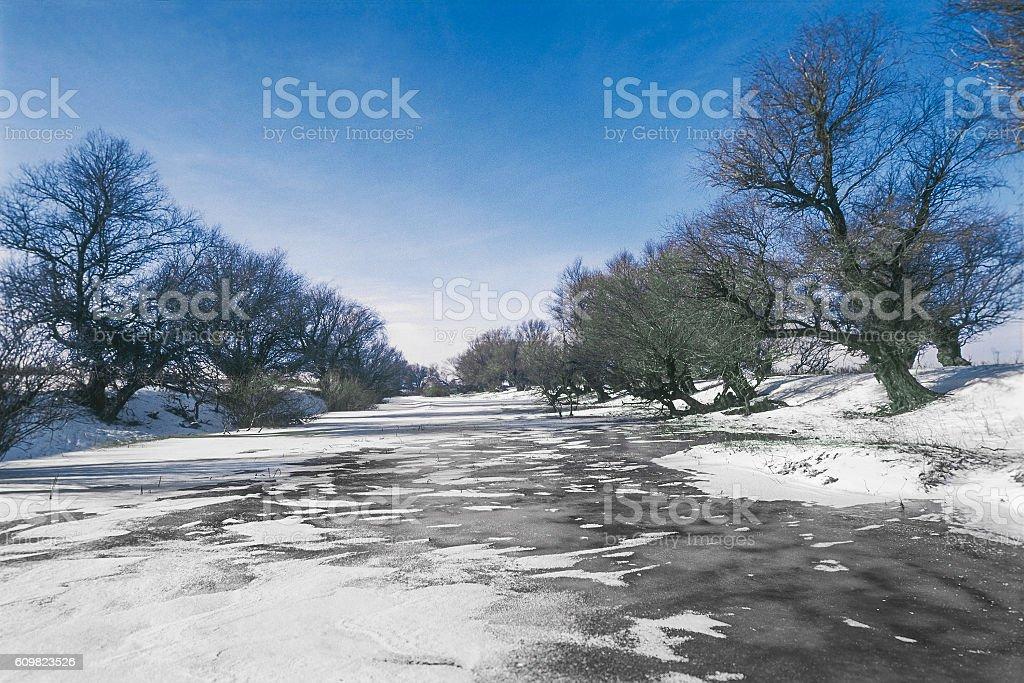 Winter, snow, frozen river, trees. Astrakhan region, Russia stock photo