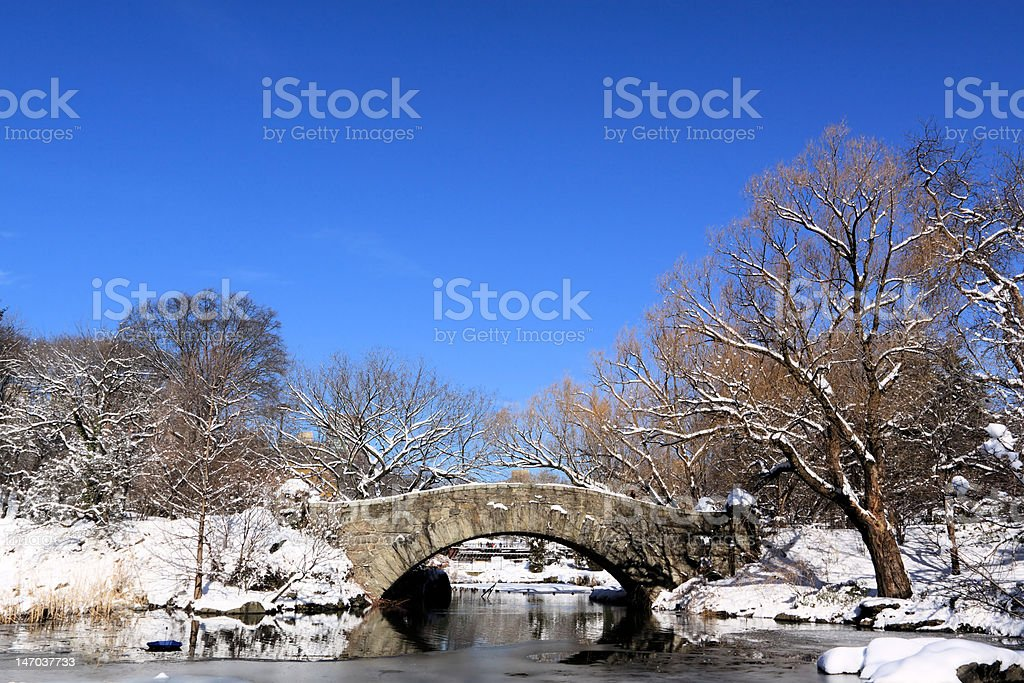 Winter Snow in Central Park, New York City royalty-free stock photo