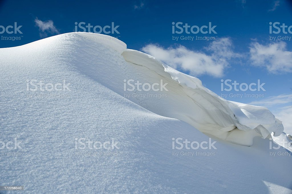 Winter Snow royalty-free stock photo