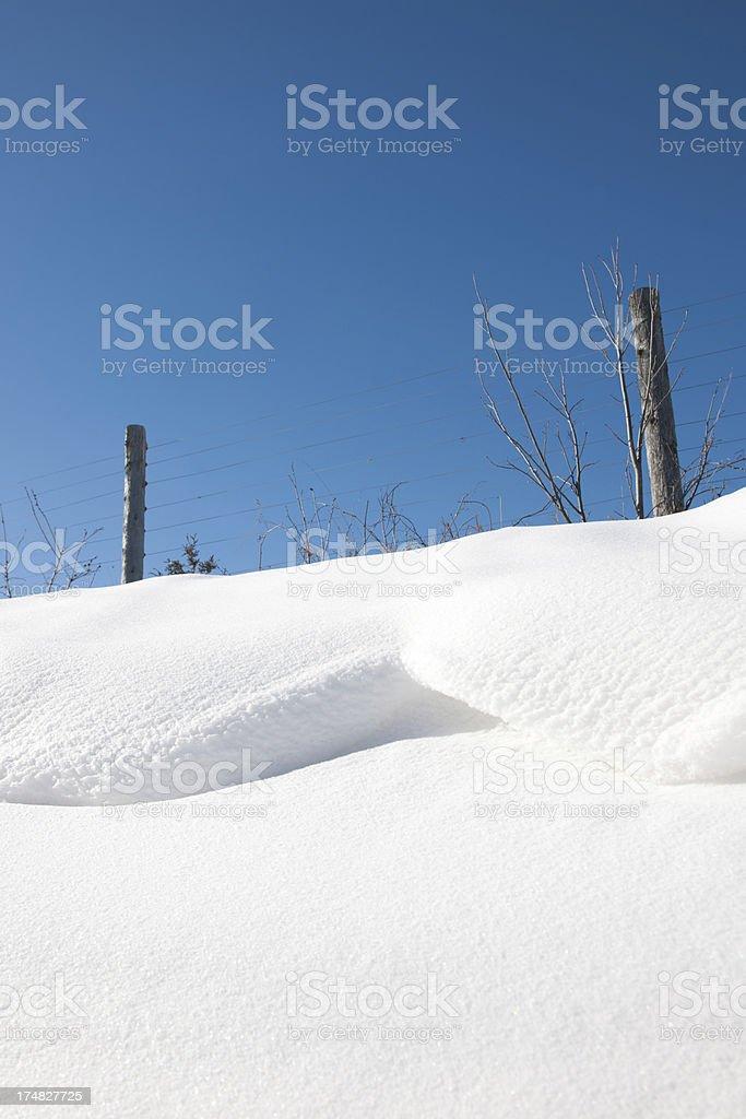 Winter Snow royalty-free stock photo