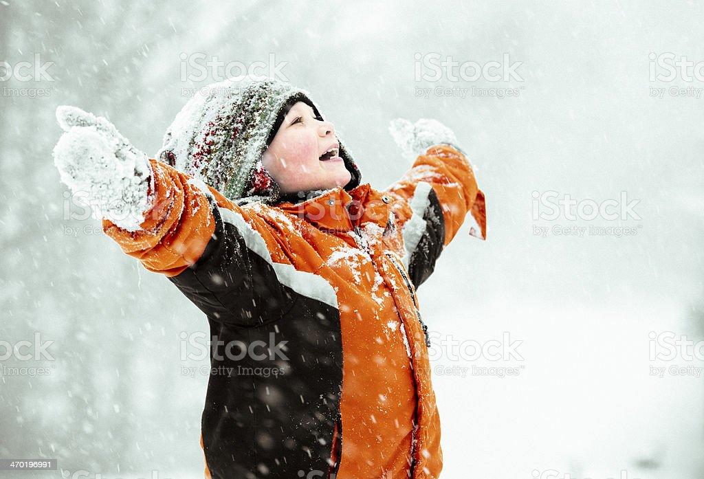 Winter snow. royalty-free stock photo