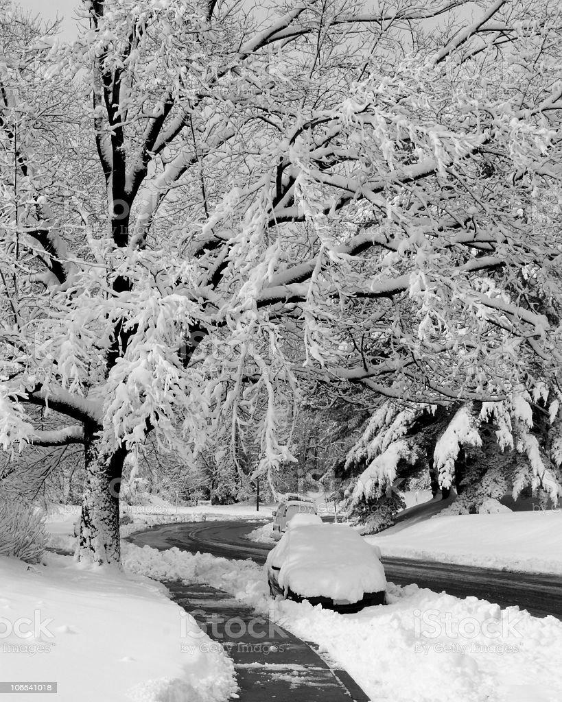 Winter snow road scene royalty-free stock photo