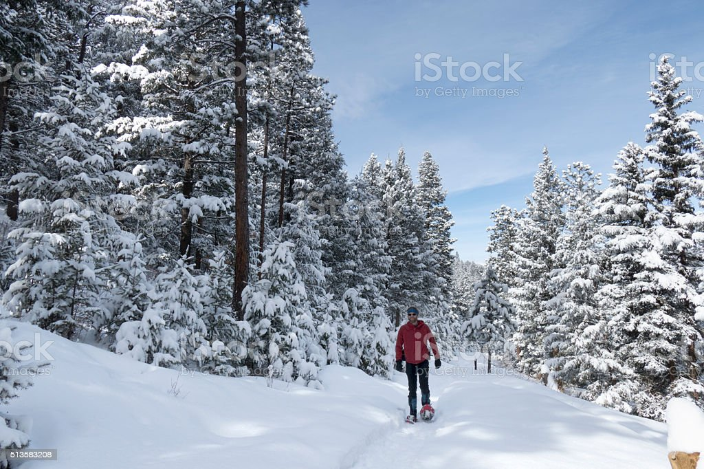 Winter snowshoeing snowy Evergreen pine forest mountain trail Colorado stock photo