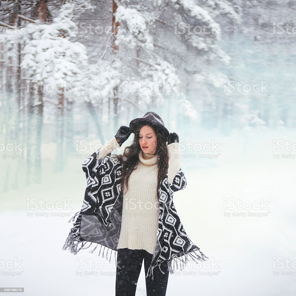 Winter snowy portrait stock photo