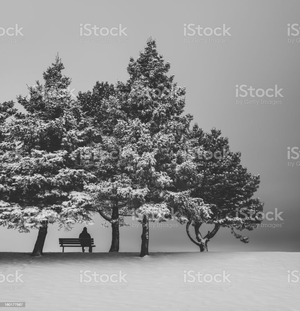 Winter Solitude royalty-free stock photo