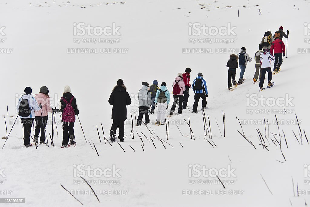 Winter Sport - People snowshoeing with a guide royalty-free stock photo
