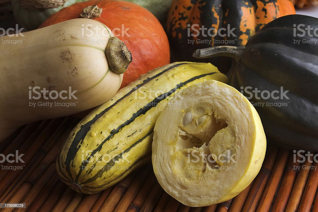 Winter Squash Display royalty-free stock photo