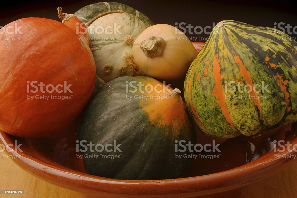 Winter Squash Variety Still Life, Autumn Vegetable Food in Bowl royalty-free stock photo