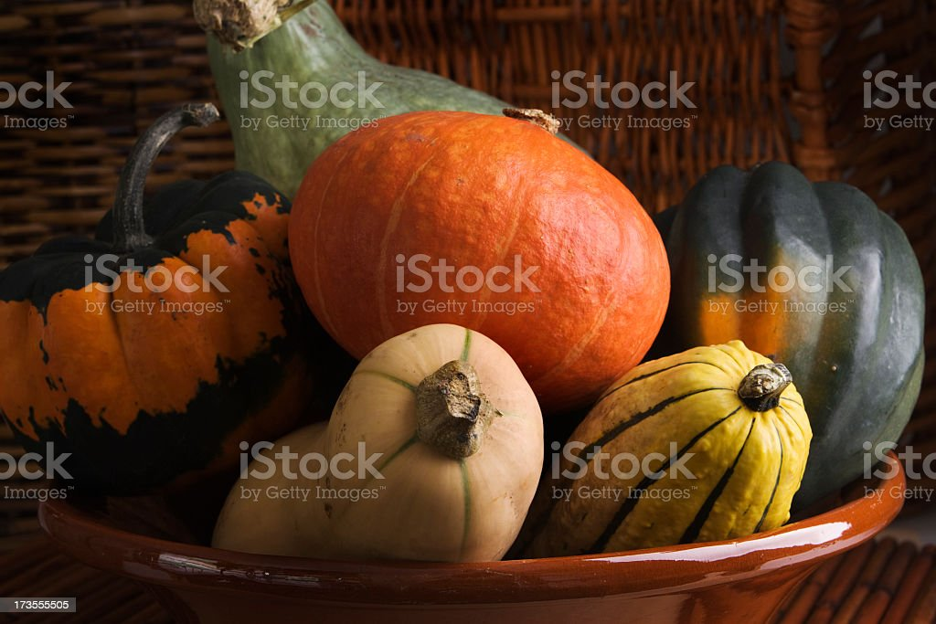 Winter Squash Vegetable Varieties Group—Acorn, Butternut, Carnival, Delicata, Hubbard stock photo