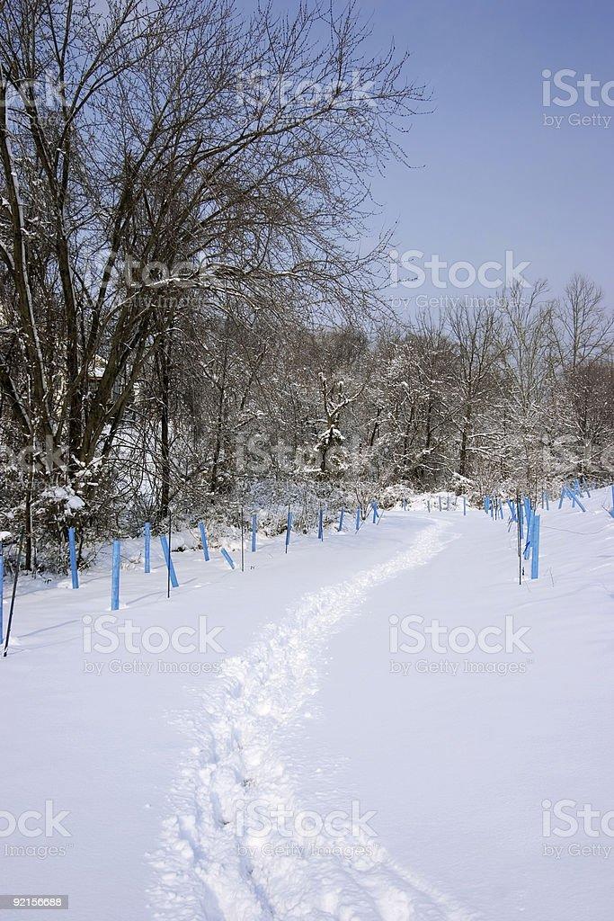 winter steps stock photo