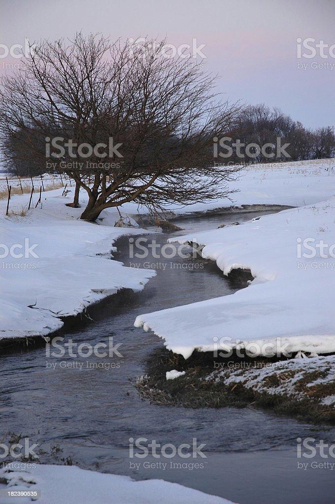 Зима Stream Стоковые фото Стоковая фотография