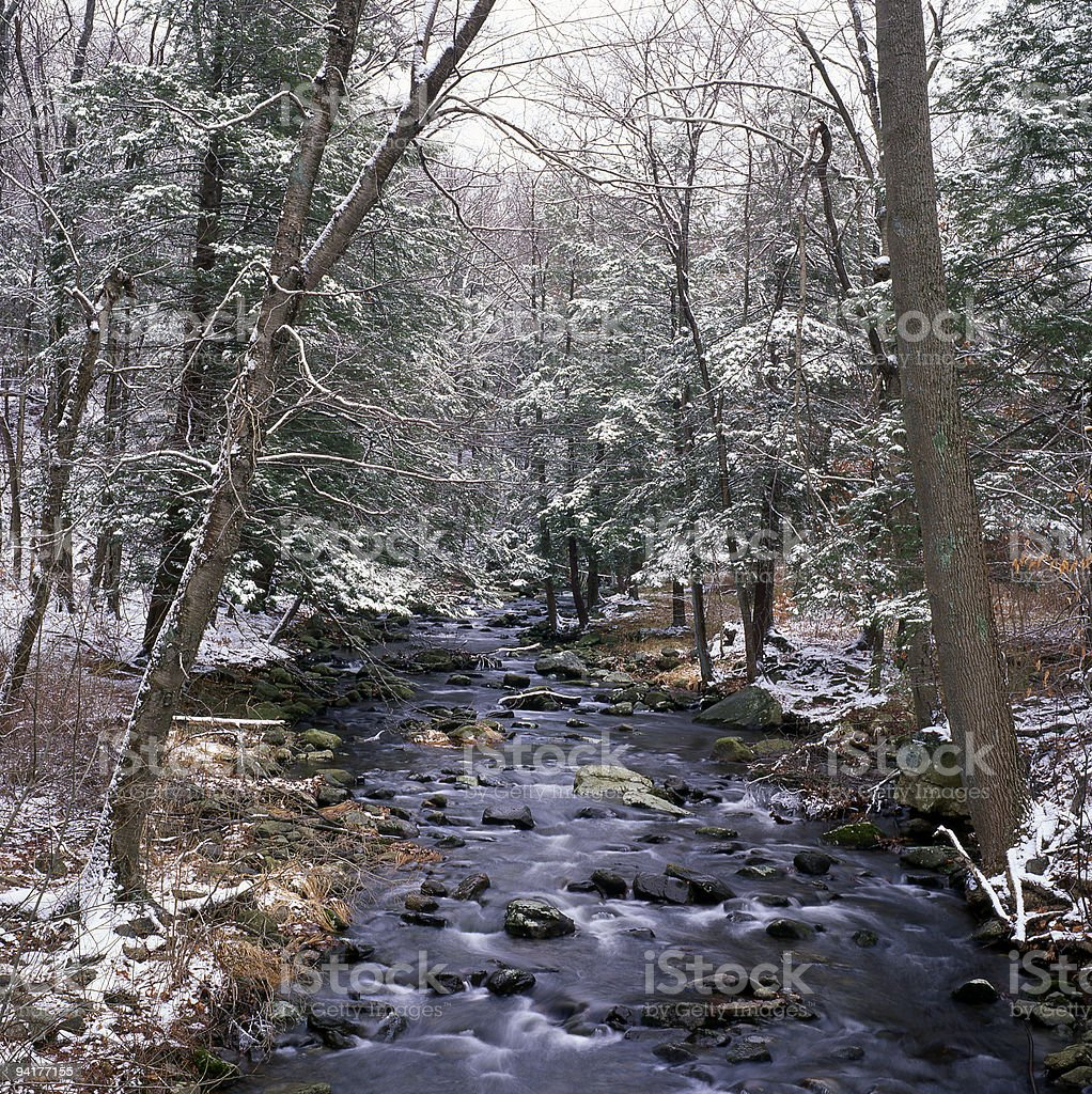 Winter stream stock photo