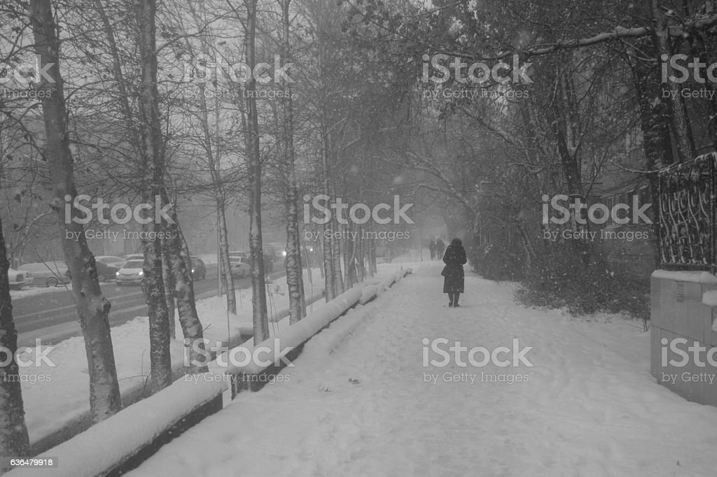 winter street stock photo