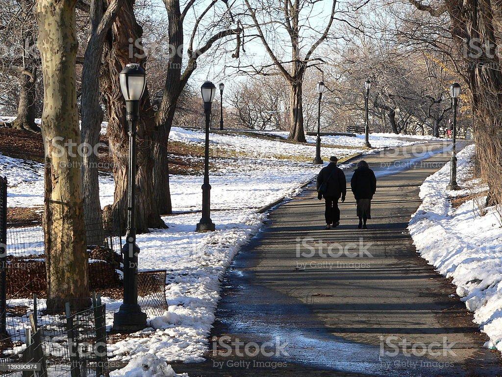 Winter stroll royalty-free stock photo