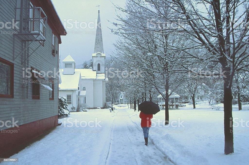 Winter Stroll stock photo