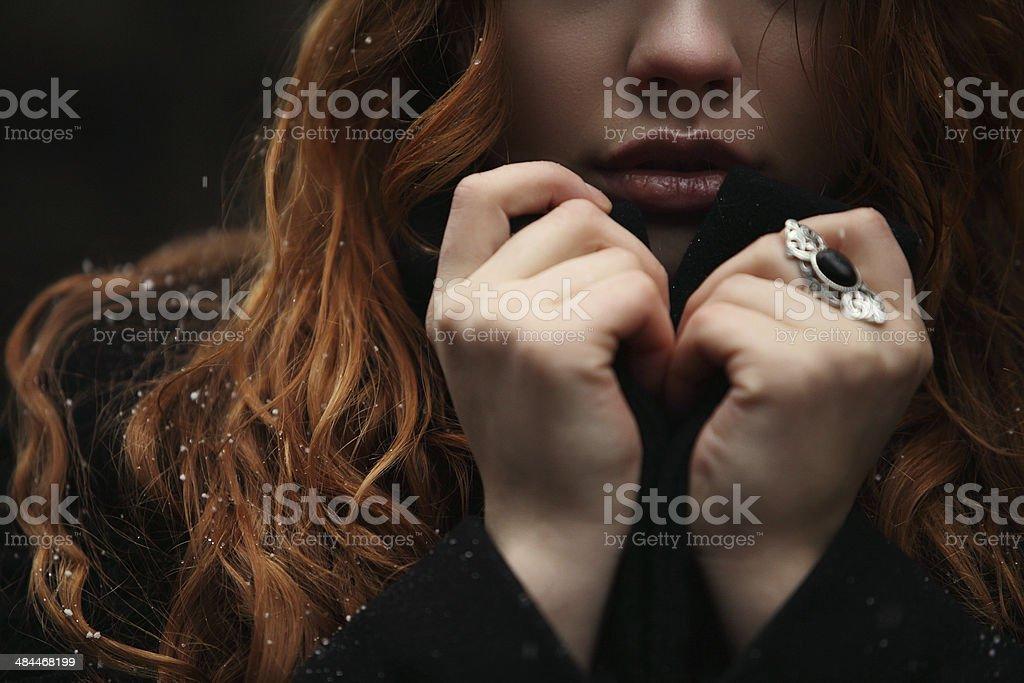 Winter-Style Lizenzfreies stock-foto