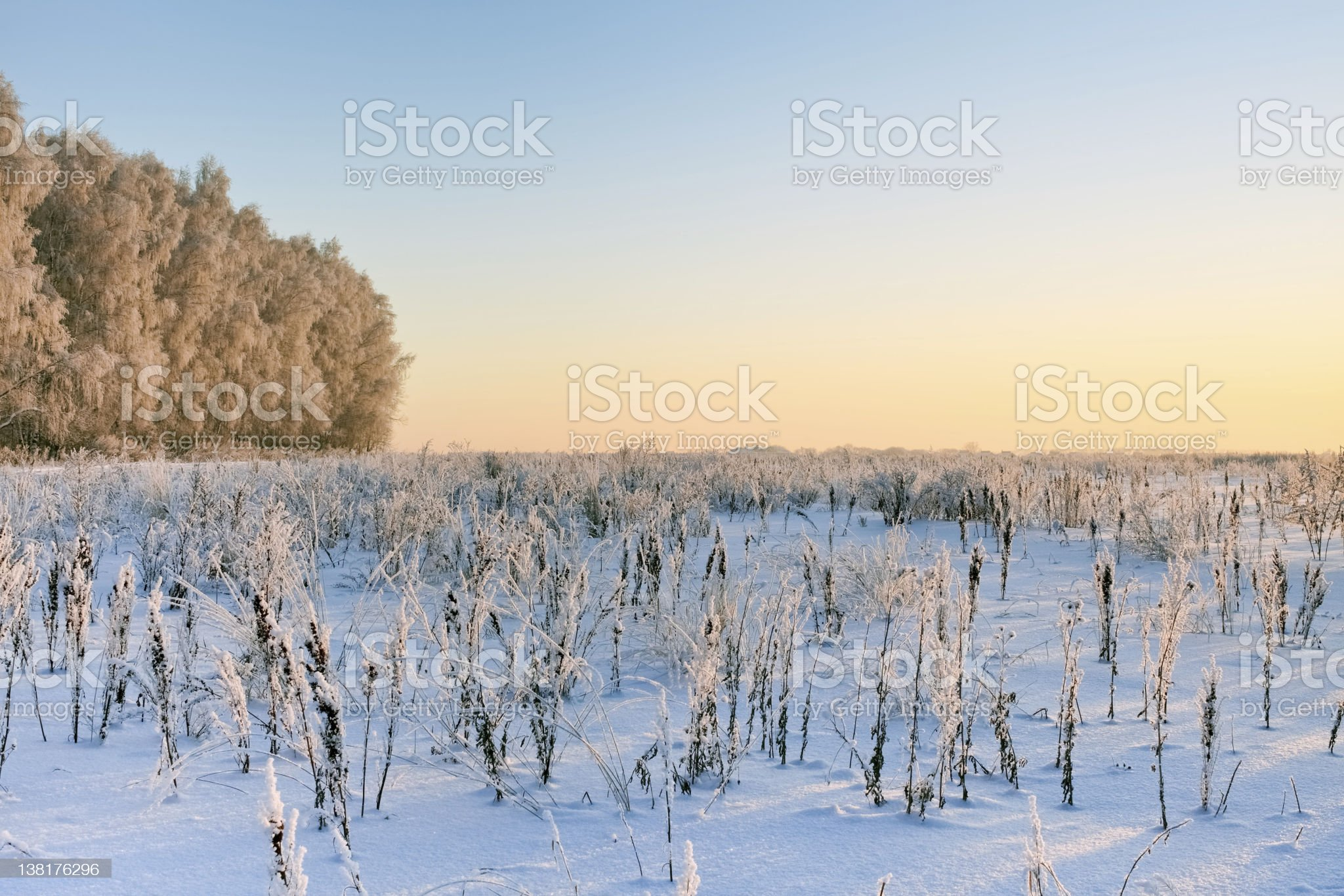Winter suburban landscape in sunset light, Moscow - Russia royalty-free stock photo