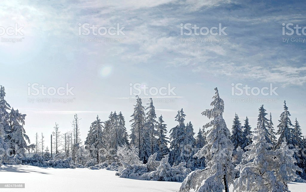 Winter sun in the Black Forest National Park stock photo
