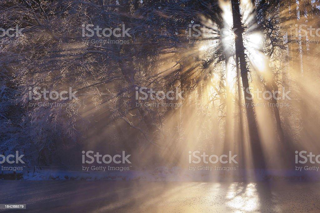winter sunbeam on a small lake stock photo